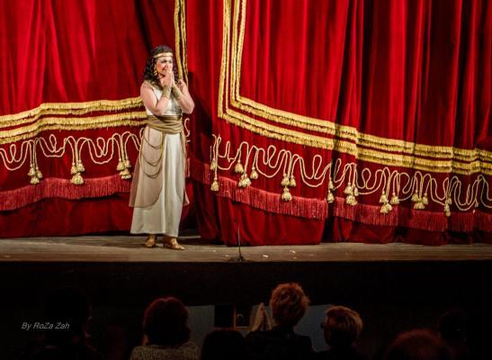 O superbă Cellia Costea, aseară în Aida de Verdi, la ONB. - Foto (c) Romeo Zaharia