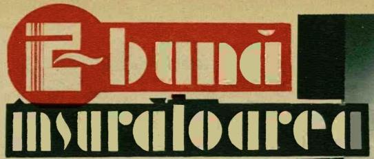 RI - Nr 355 - 16-11-1933 - Titlu rubrica