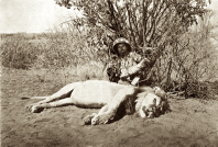 Safari Somalia